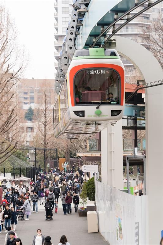 フルムーン夫婦グリーンパスでGO ! 2日目 ~上野動物園